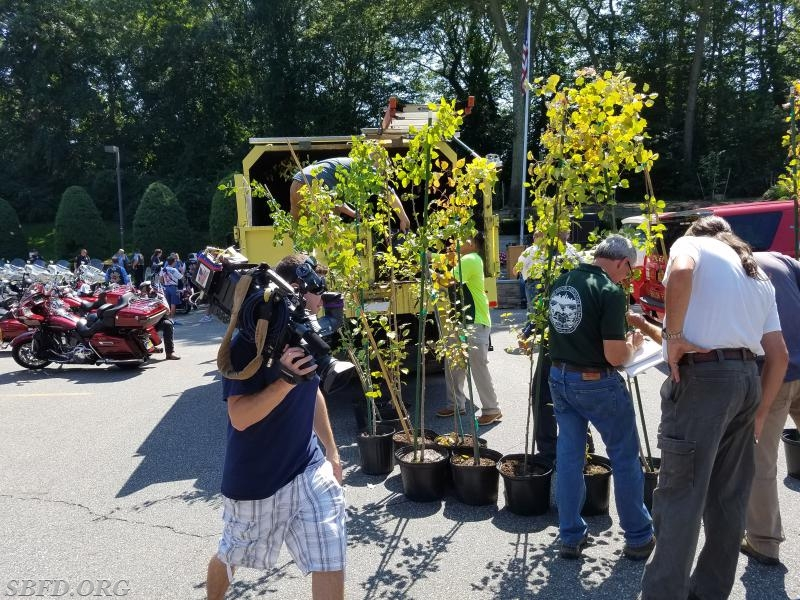Fox TV News covered the delivery of the trees.